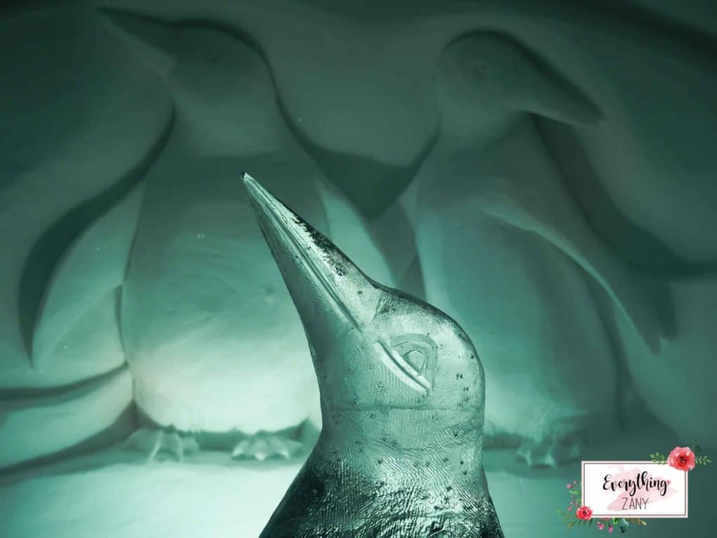 inside the igloo hotel with penguins