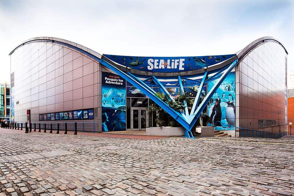Sealife centre birmingham