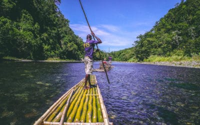 Points of Interest: Ecotourism and Fun Things to Do in Jamaica