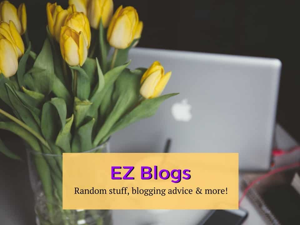 Everything Zany Blogs
