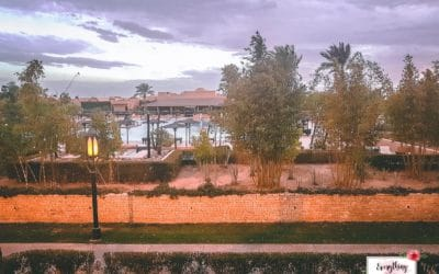 All-Inclusive Marrakech Hotels: Clubhotel Riu Tikida Palmeraie Review