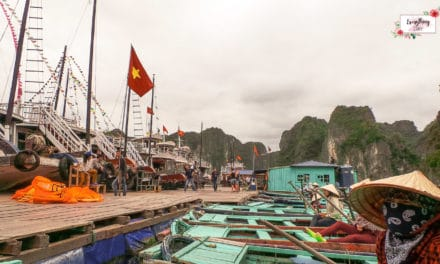 Best Halong Bay and Hanoi Itinerary for 4 days (Budget and What to Do)