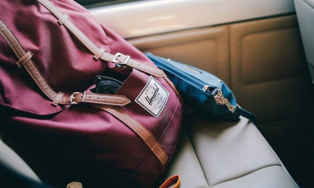 Collection of Best Travel Backpacks and Daypacks for Men and Women