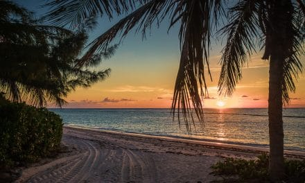 Best Eco-Friendly Things to do in Punta Cana, Dominican Republic