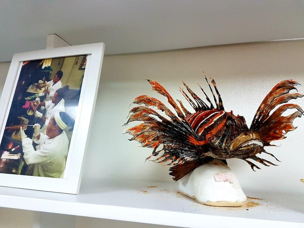 Puntacana Foundation Lionfish Project