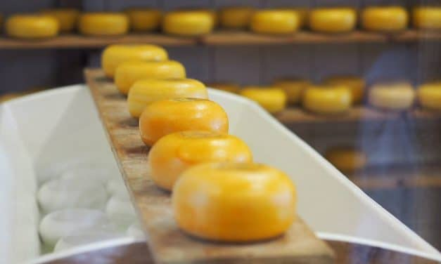 The List of the Best Cheeses in the World