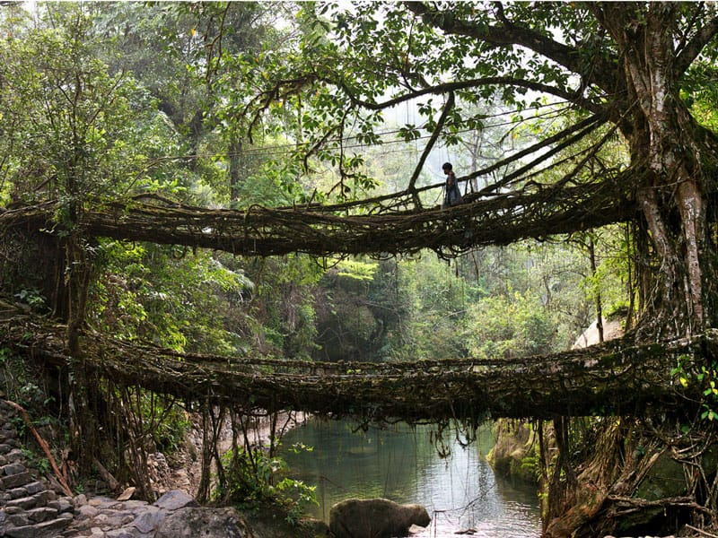 places to visit in india - north-east-meghalaya