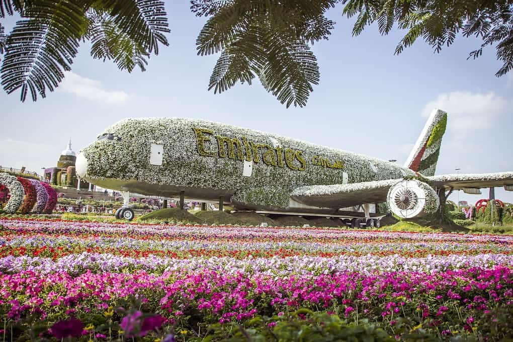 What to do in Dubai: Dubai Miracle Garden