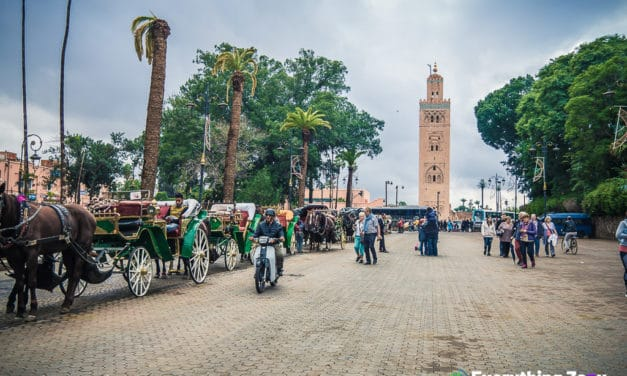 The Best Marrakech Tours and Day Trips That You Shouldn't Miss